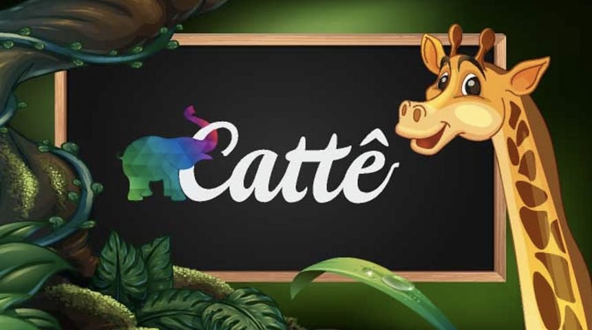 Catte